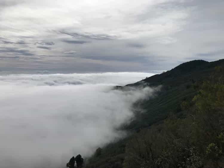 La Palma ist abenteuer Ziel für vielbegabte Scannerpersönlichkeiten
